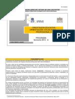 Programa en Revisión or. Vocacional-Profesional