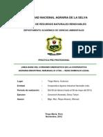 Linea Base Del Consumo Energetico en La Cooperativa Agraria Industrial Naranjillo Ltda.- Sede Domicilio Legal