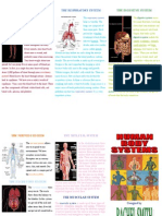 Overview of the Body Systems