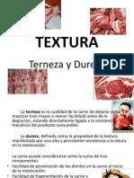 TEXTURA Completo