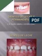 dientestemporalesypermanentes-111023170318-phpapp01