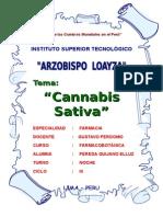 Aaaa Cannabis Sativa Resum