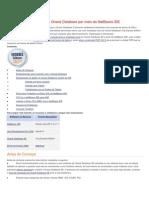 Estabelecendo Conexão Ao Oracle Database Por Meio Do NetBeans IDE