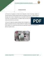 Lixiviacion Por Agitacion en Botellas (1)