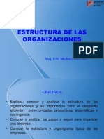 Organizacion-estruc de Ls Organiz