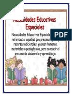 """Ensayo """"Necesidades Educativas Especiales"""