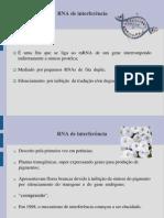 RNA de Interferência (Apresentacao)