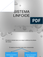 4= Sistema Linfoide
