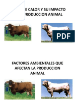 Stress de Calor y Su Impacto en La Produccion Animal1