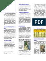 Uso de La Caña de Azúcar en La Alimentación de Bovinos de Doble Propósito