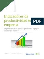 Indicadores de Productividad en Una Empresa
