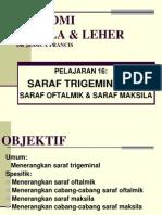 Pelajaran 16 - Saraf Trigeminal - Saraf Oftalmik & Maksila