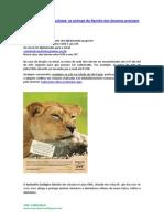 Doe Notas Fiscais Paulistas
