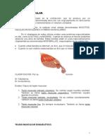 Bioquimica de La Contraccion Muscular