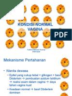 Kondisi Normal Vagina