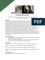 the boneyard project year 2 2013 2