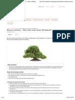 Bonsai züchten - Wie zieht man einen Minibaum