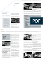 Megaesofagoenelgato.Revisiondetrescasos.pdf