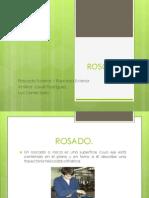 ROSCADO1