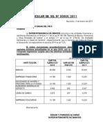 Capital Minimo de Las Entidades FinancierasCIRCULARSBSGNro52011
