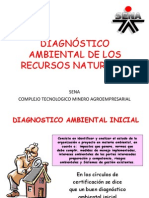 Diagnostico Ambiental Inicial