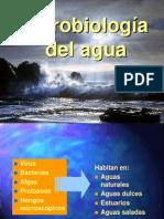 Microbiologia Del AguaExp II