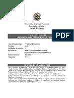Programa Laboratorio Operaciones Nuevo Formato