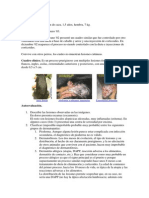 Caso Clinicos Dermatologia