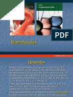 1 presentacion Biomoleculas
