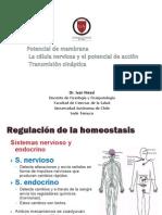 2.Potenciales de Membrana
