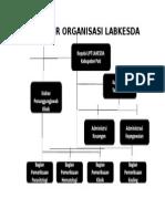 Struktur Organisasi Labkesda 2
