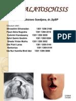Labiopalatoschisis