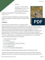 La Conférence Des Oiseaux — Wikipédia