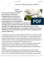 La Serrapeptase, Un Anti-Inflammatoire Naturel Majeur - Enzymes - Nutranews