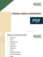 Cranial Nerve Assessment