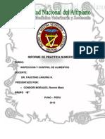 Informe de Practicas Inspeccion Ultimo