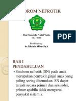 Presentation SN
