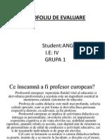 Ce Înseamnă a Fi Profesor European