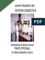 Erboristeria domestica