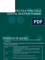 Infectiile Tract Genital Inferior E