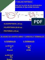 tema 3 peptidos