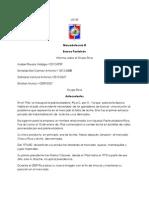 Informe Grupo Rica, Unidades estrategicas de negocios