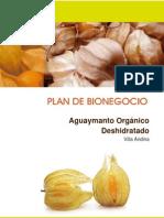 Plan Aguaymanto Villa Andina FINALIZADO 2013