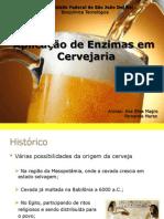 Apresentação_Enzimas_Cerveja
