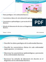 Diarrea2013_1_-1