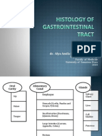 Digestive System 2014