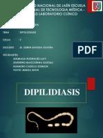 Himenolipiasis y Dipilidiasis