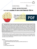 directed study - day 2 - biology - popcorn energy flow lab report - instruction sheet