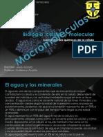 Biología Celular y Molecular (Tema III Macromoleculas)