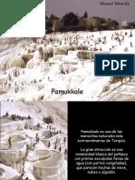 Pamukkale 9101